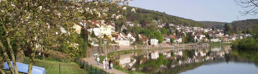 Ferienwohnung Neckarsteinach